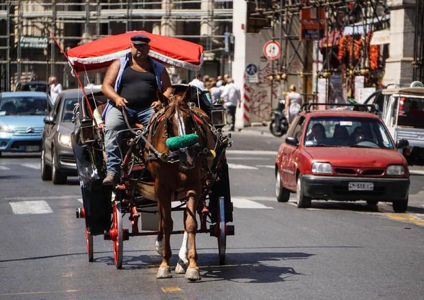Ferragosto: Tanti stranieri, boom camper e agriturismo