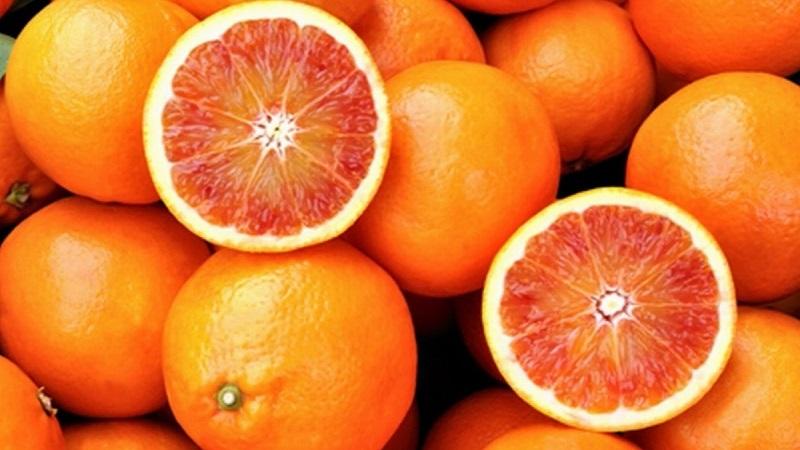 Eventi: Riberella Winter Food Festival dal 6 al 9 dicembre a Ribera