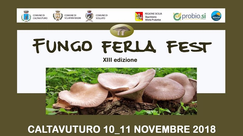 Fungo Ferla Fest a Caltavuturo il 10 e l'11 novembre
