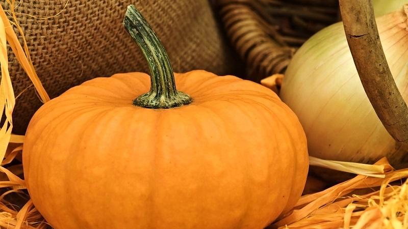 Sagra della Zucca a Casalvecchio Siculo il 17 e il 18 novembre