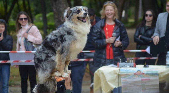 Dog Fest 2019 evento cani Villa Trabia Palermo