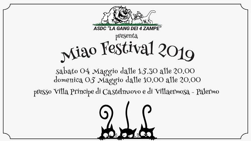 Miao Festival 2019 a Palermo l'evento dedicato ai gatti