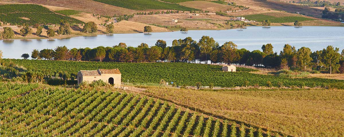 Agriturismo e Turismo Rurale Sicilia – 2019/20