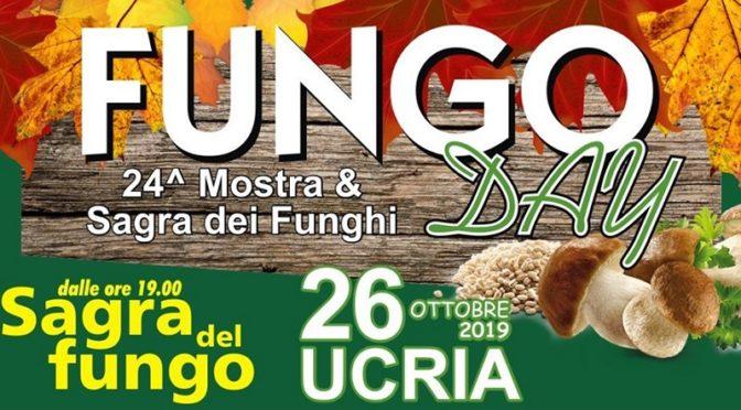 Fungo Day - Mostra e Sagra dei Funghi a Ucria